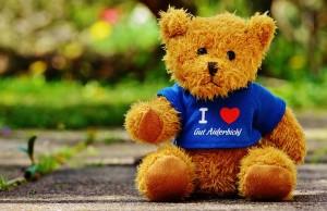 teddy-1338946_640